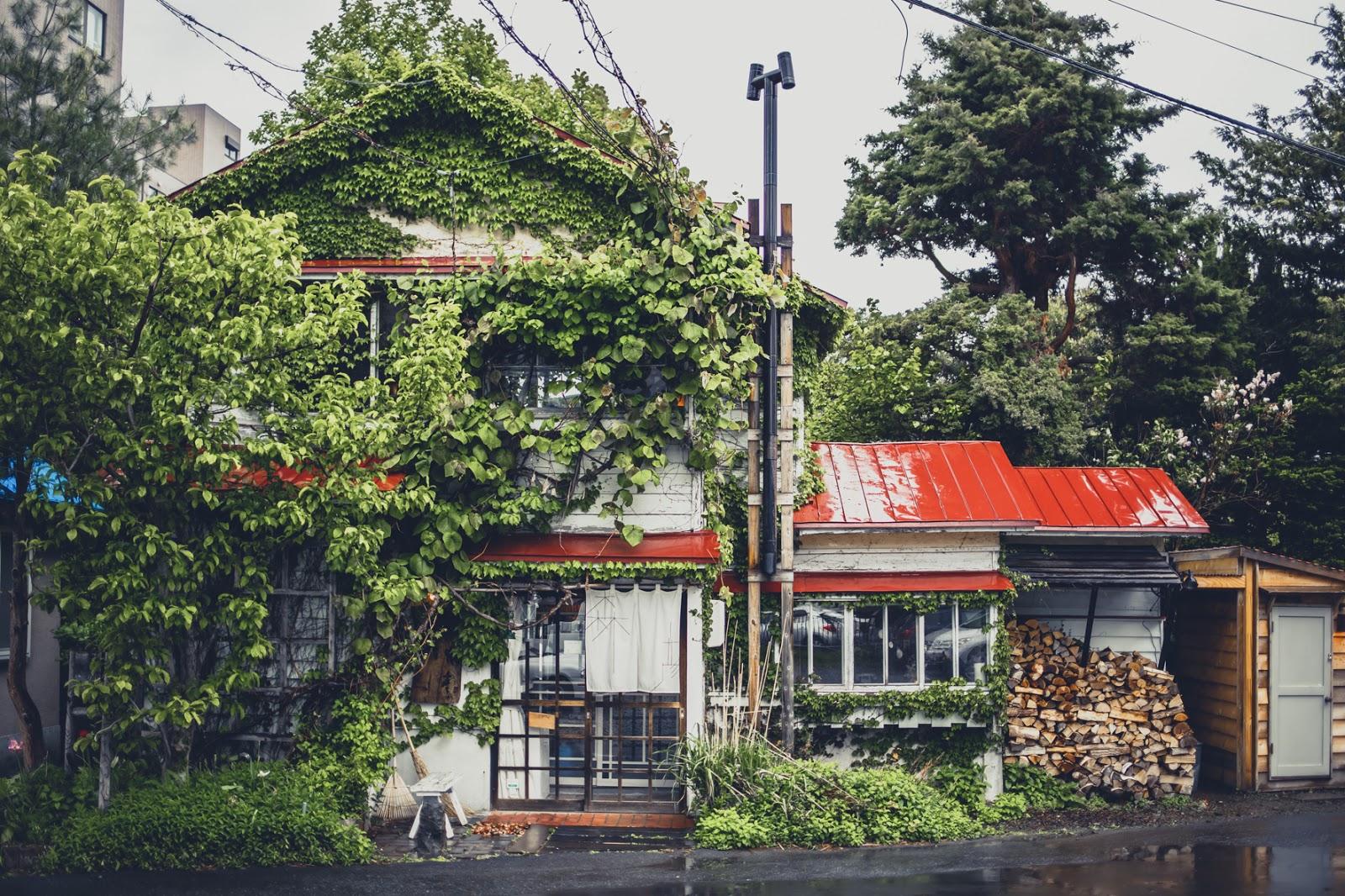 アイキャッチ:誰もが知る北海道・札幌市の人気カフェ「MORIHICO.」で …