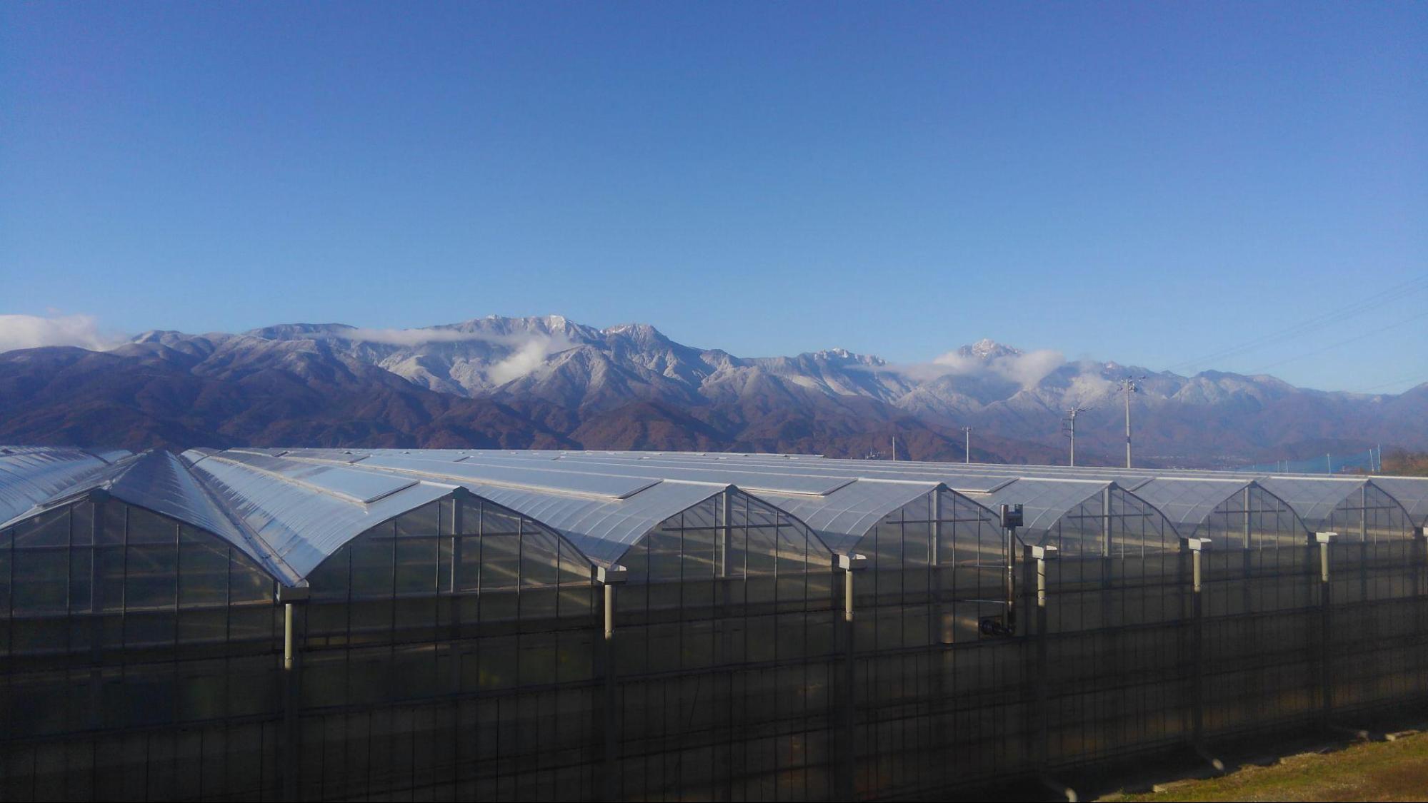 アイキャッチ:「水を制する者が水耕栽培を制す」明野九州屋ファームのこだわり …