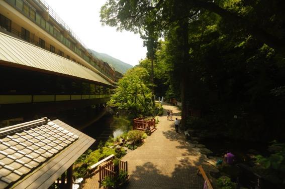 アイキャッチ:玉簾の瀧や湧き水、水に恵まれた箱根湯本温泉「天成園」庭園の魅 …