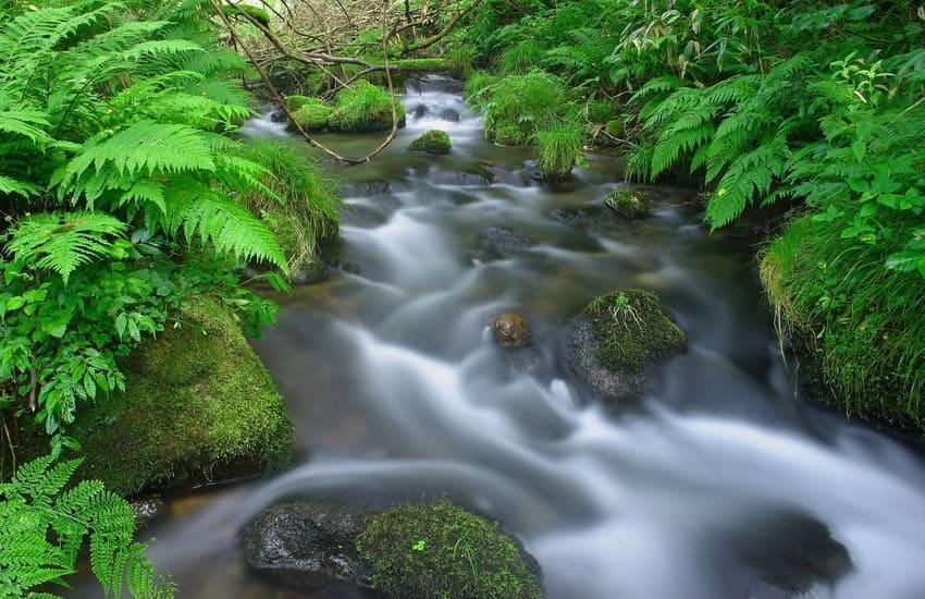 アイキャッチ:鳥取・米子の新名所「美水の郷」とは?米子市観光協会が語る米子 …