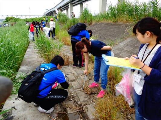 河川敷を清掃するイメージ画像