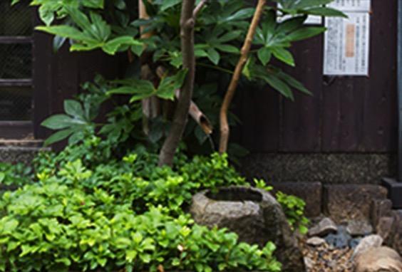 アイキャッチ:京都・伏見の名水を使った酒造りから料理まで 「黄桜」の伏水と …