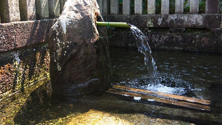 湧き水が流れる様子