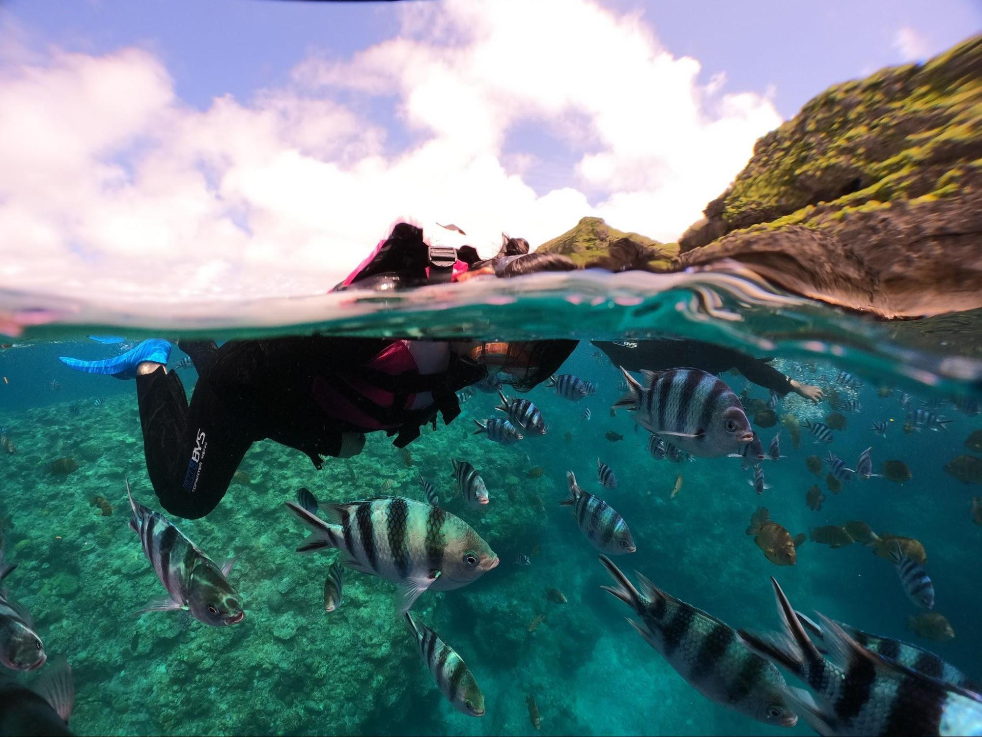 アイキャッチ:沖縄の美しい海を堪能できる「マリンサービス むるぬーし」のツ …