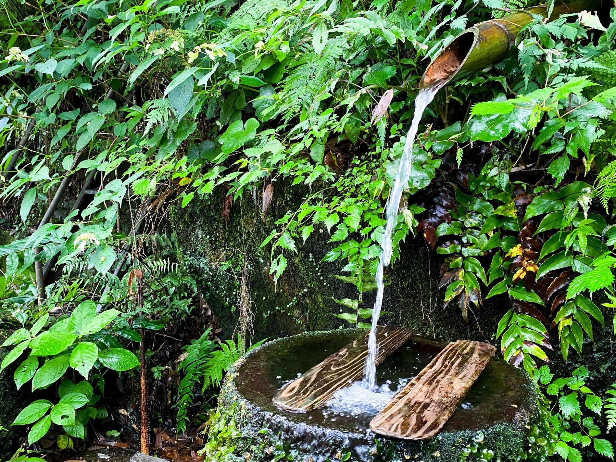 市民に愛される小林市の水