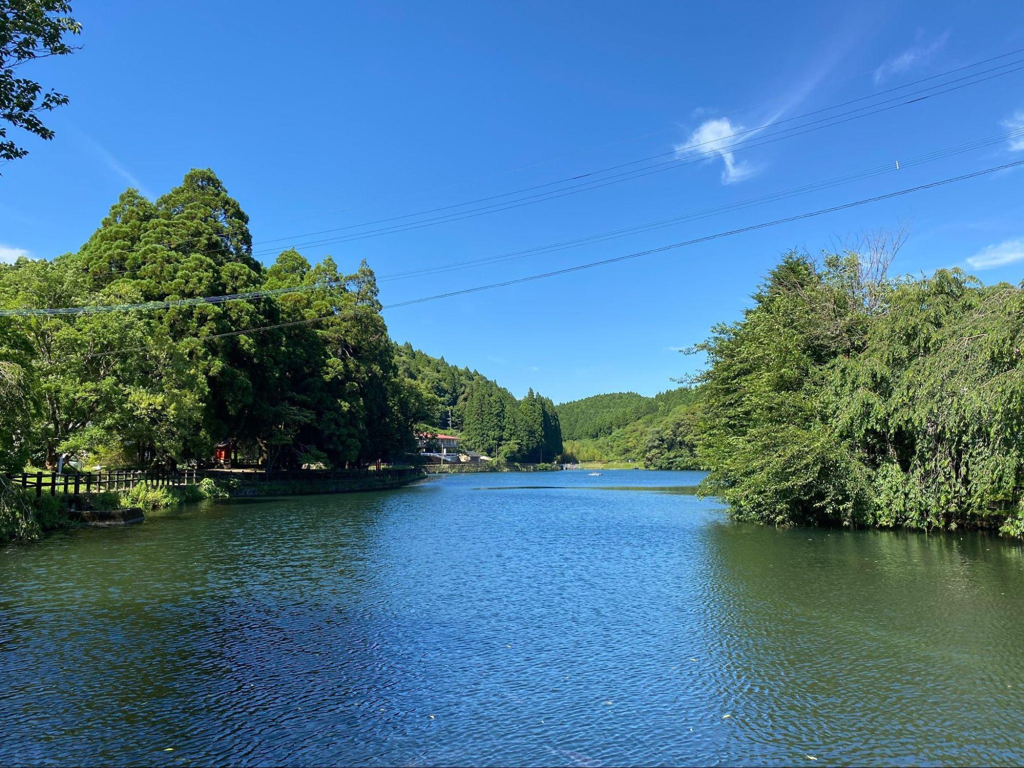 出の山公園は池を中心に成り立つ