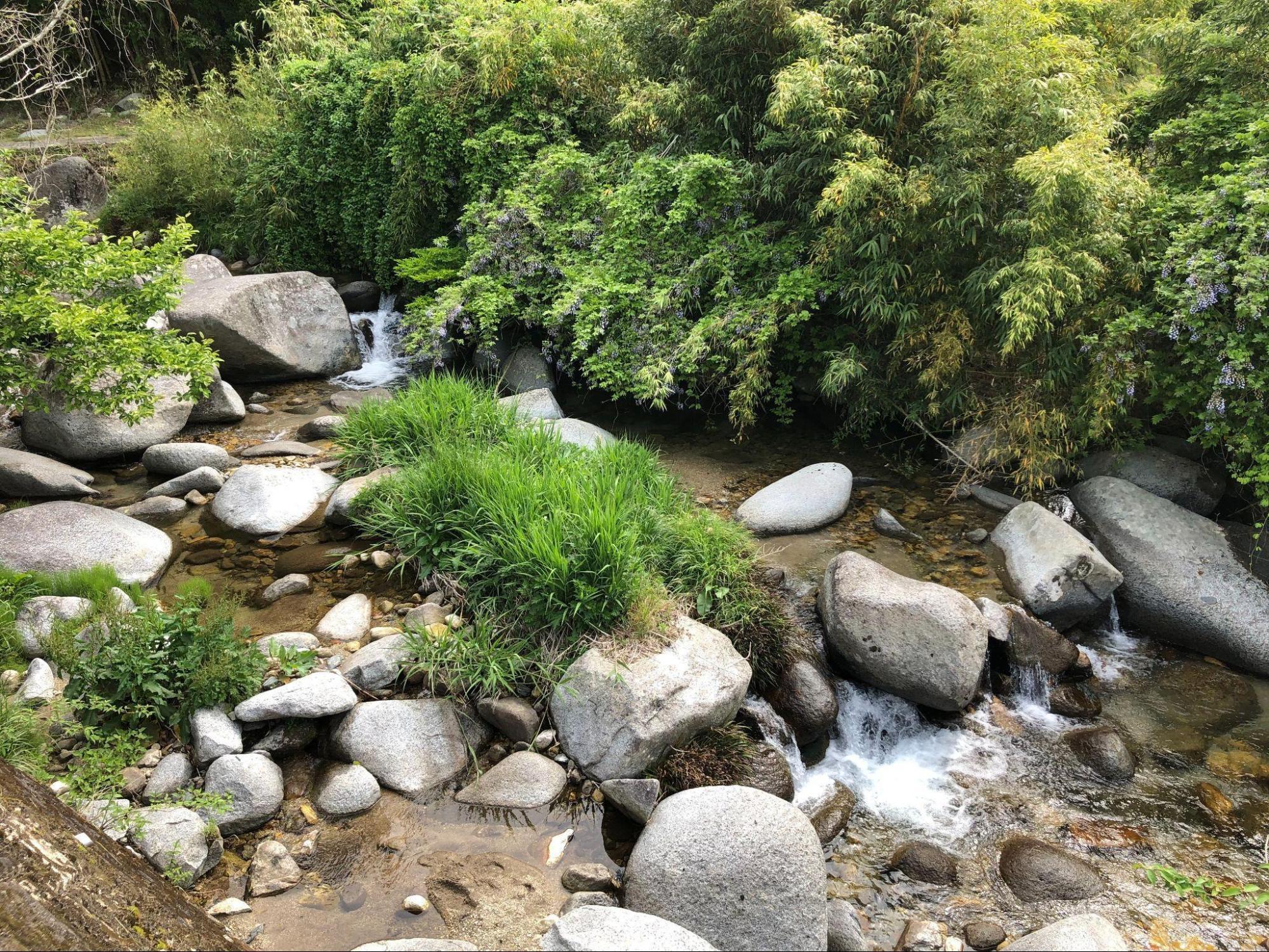 アイキャッチ:佐賀の最高峰、脊振山の伏流水で酒造り。大和酒造が醸す名酒の姿 …